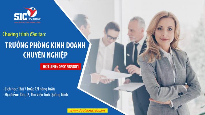 Chương trình đào tạo: Trưởng phòng kinh doanh chuyên nghiệp